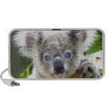 Cute Koala Bear iPhone Speaker