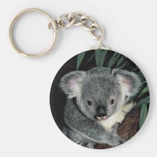 Cute Koala Bear Keychains