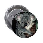 Cute Koala Bear Pins