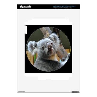 """""""Cute koala bear"""" iPad 3 Skins"""
