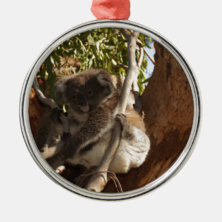Cute Koala Bears Aussi Outback Safari Nature Art Christmas Tree Ornaments