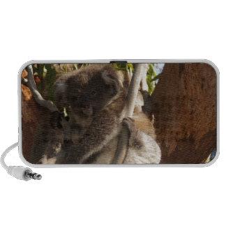 Cute Koala Bears Aussi Outback Safari Nature Art iPhone Speakers