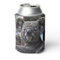 cute koala can cooler