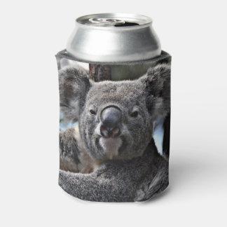 cute koala can cooler