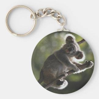 Cute Koala Climbing Basic Round Button Keychain