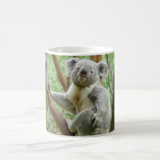 Cute Koala Coffee Mug
