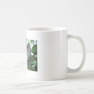 Cute Koala Coffee Mug