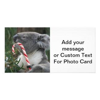 Cute Koala Eating Candy Cane Card
