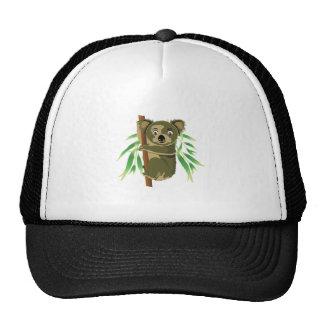Cute Koala in Tree Trucker Hat