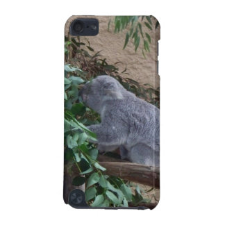 Cute Koala iPod Touch (5th Generation) Cover