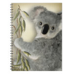 Cute Koala Note Books