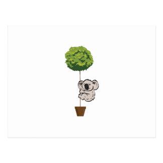 Cute Koala on the Tree Postcard