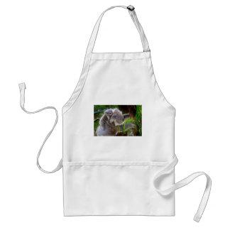 Cute Koalas Adult Apron