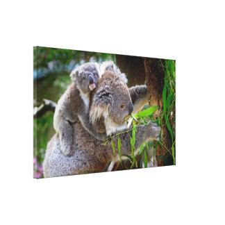 Cute Koalas Canvas Print