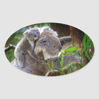 Cute Koalas Oval Sticker