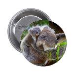 Cute Koalas Pinback Buttons