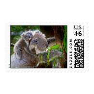 Cute Koalas Stamp