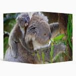 Cute Koalas Vinyl Binder
