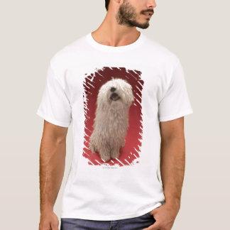 Cute Komondor Dog T-Shirt