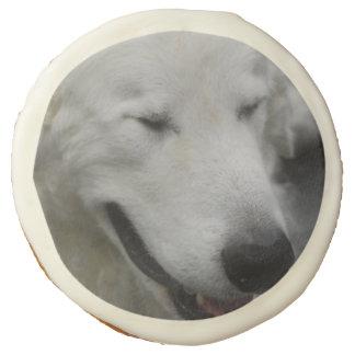 Cute Kuvasz Dog Sugar Cookie