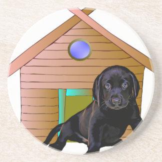 Cute Labrador at kennel Sandstone Coaster