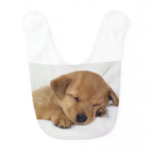 Cute Labrador Puppy Bib