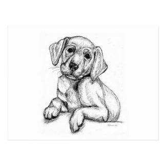 Cute Labrador Puppy Postcard