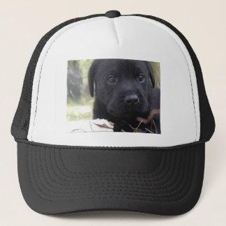 Cute labrador puppy trucker hat