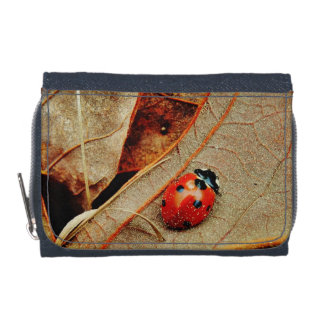 cute Ladybug costume personalize name gift Wallet