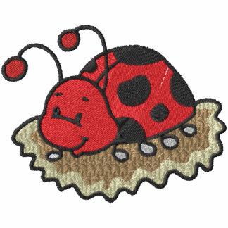 Cute Ladybug in Dirt