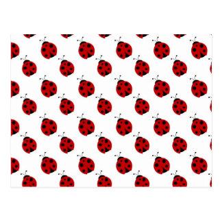 Cute Ladybug Pattern Postcard