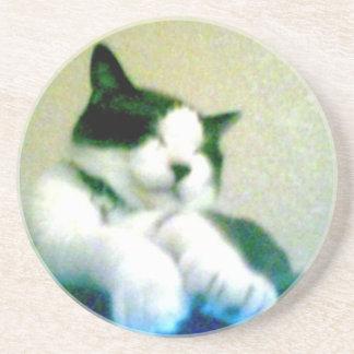 cute laid back kitty sandstone coaster