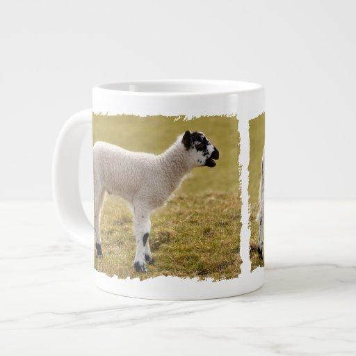 Cute Lamb Bleating Black White Baby Sheep Jumbo Mug