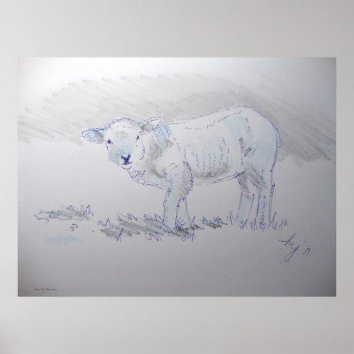 cute lamb sketch drawing poster