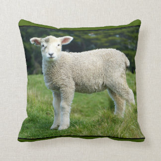 Cute Lamb with Muddy Face Playing in the Meadow Throw Pillow