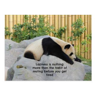 Cute Lazy Day Panda Postcard