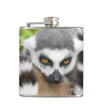 Cute Lemur Hip Flask