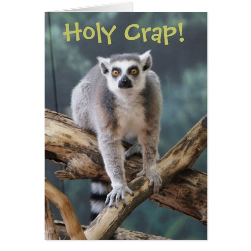 how to say holy crap in spanish