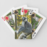 Cute Lemur Lounging in Tree Branches Photo Card Deck
