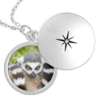 Cute Lemur Stripey Locket Necklace