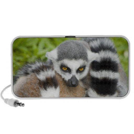 Cute Lemur Stripey Tail iPhone Speaker
