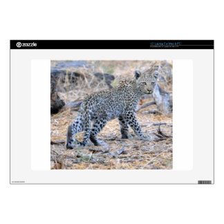 Cute Leopard Cub on the Move Decals For Laptops