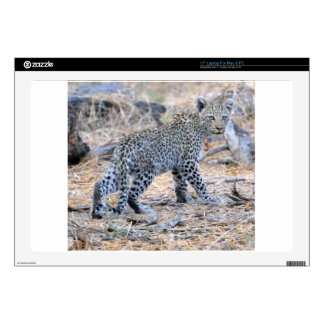Cute Leopard Cub on the Move Laptop Decals