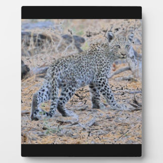 Cute Leopard Cub on the Move Plaque