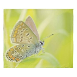 Light Green Butterfly Print King Duvet Cover