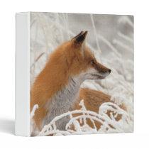 Cute Lil red fox school binder