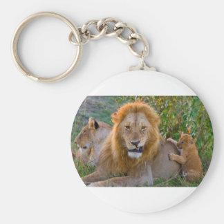 Cute Lion Cub Playing With Dad, Kenya Keychain