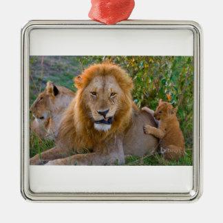 Cute Lion Cub Playing With Dad, Kenya Metal Ornament