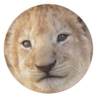 Cute lion cub portrait melamine plate
