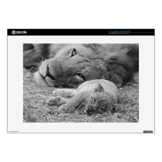 Cute Lion Cub Resting With Father Laptop Decal